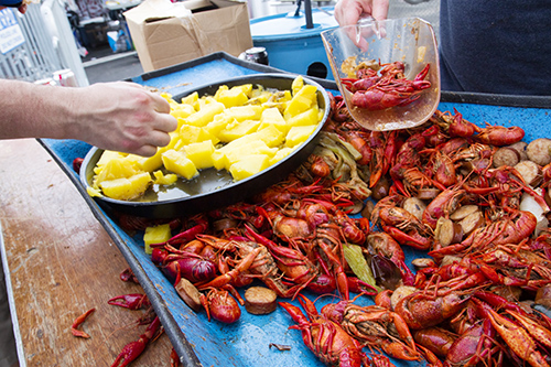Photos: UNO gets boiling for annual Crawfish Mambo